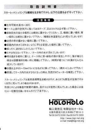 Holoholo1